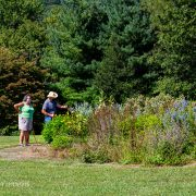 Judy and Bobby Wade enjoy the pollinator garden